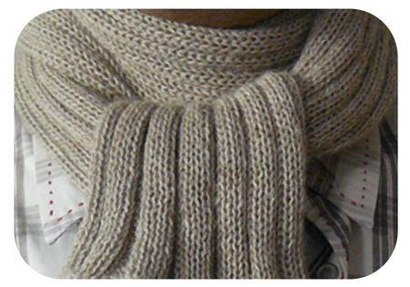 8a14042d1864 Tricotin echarpe homme - Idées de tricot gratuit